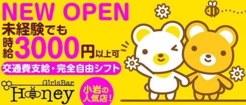 【小岩】Girl's Bar HONEY(ハニー)【公式求人情報】(市川キャバクラ)の求人・バイト・体験入店情報