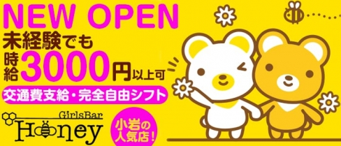 Girl's Bar HONEY(ハニー)【公式求人情報】(市川キャバクラ)の求人・バイト・体験入店情報
