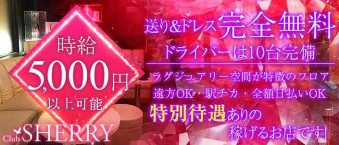 club sherry(シェリー)【公式求人情報】