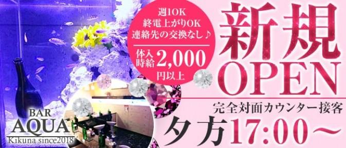 AQUA Girl's Bar菊名店(アクアガールズバー)【公式求人情報】