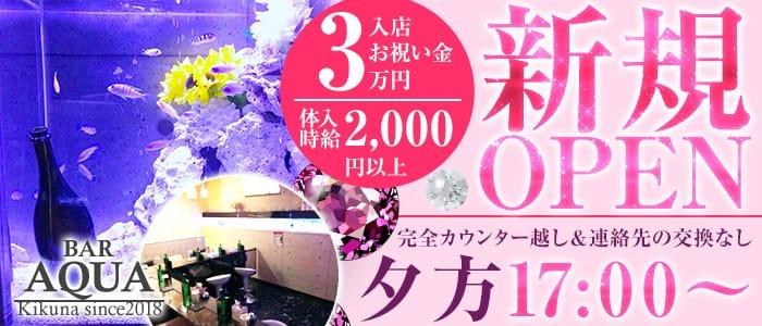 AQUA Girl's Bar菊名店(アクアガールズバー) 菊名ガールズバー バナー