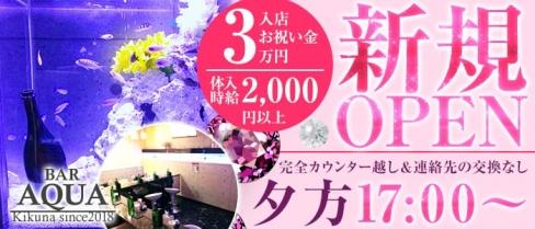 AQUA Girl's Bar菊名店(アクアガールズバー)【公式求人情報】(菊名ガールズバー)の求人・バイト・体験入店情報