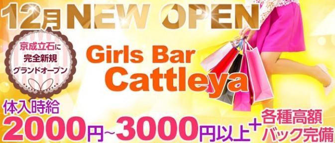 Girls Bar Cattleya(カトレア)【公式求人情報】