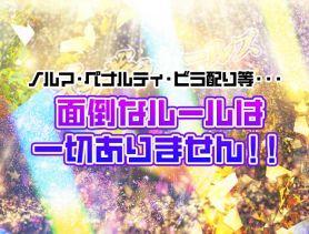 ギラギラガールズ 歌舞伎町ガールズバー SHOP GALLERY 2
