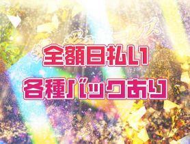 ギラギラガールズ 歌舞伎町ガールズバー SHOP GALLERY 5