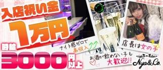 Cafe&Bar Nya&Co.(にゃんこ)【公式求人情報】