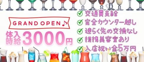 【鶴見】Girls bar Swan(スワン)【公式求人情報】(関内ガールズバー)の求人・バイト・体験入店情報