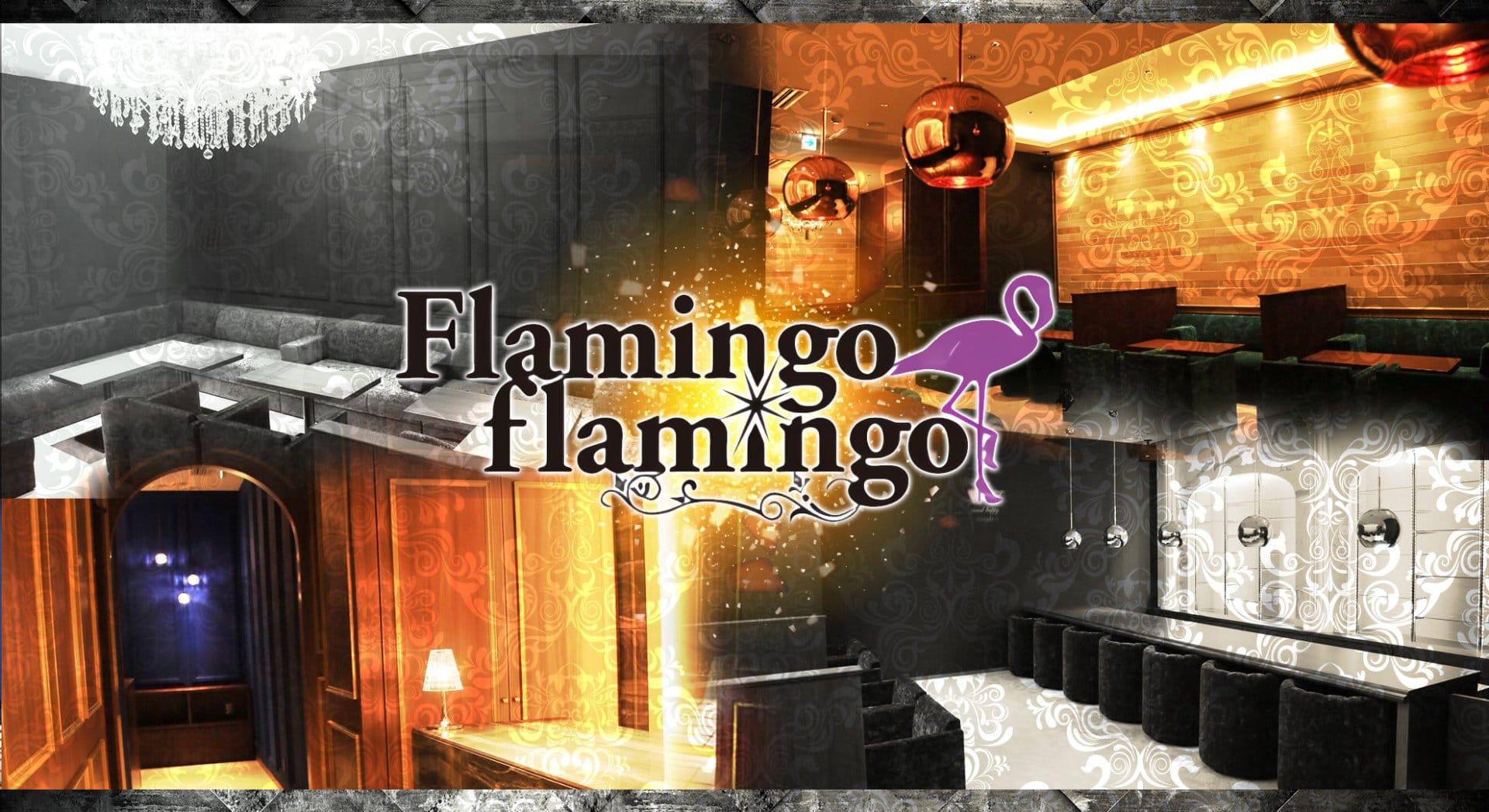 flamingo flamingo(フラミンゴ フラミンゴ) 中洲キャバクラ TOP画像