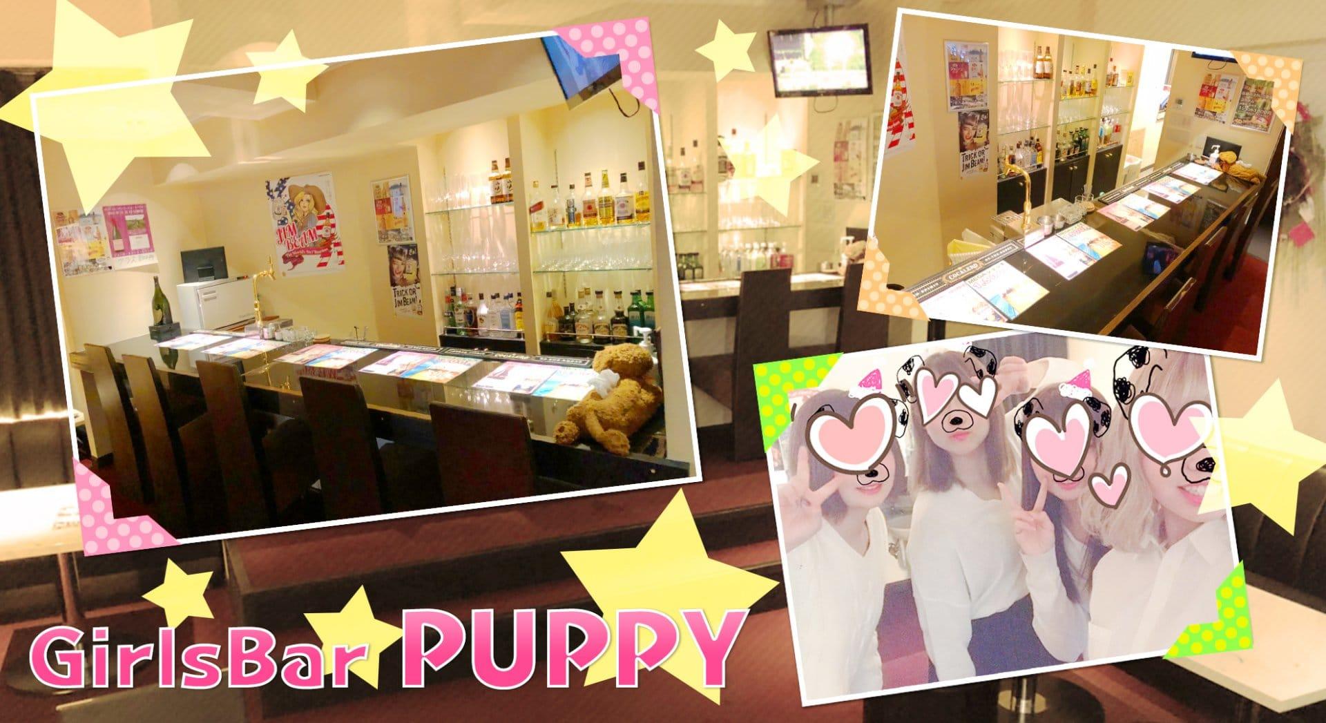 【藤沢】GirlsBar PUPPY(パピー) 藤沢ガールズバー TOP画像