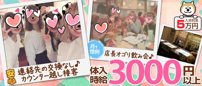 【藤沢】GirlsBar PUPPY(パピー) 藤沢ガールズバー バナー