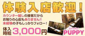 【藤沢】GirlsBar PUPPY(パピー) 藤沢ガールズバー 即日体入募集バナー