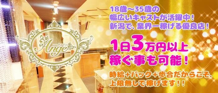 lounge Ange(ラウンジアンジュ) 新潟キャバクラ バナー
