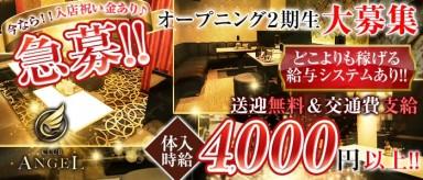 Club ANGEL (クラブエンジェル)【公式求人情報】(中央町キャバクラ)の求人・バイト・体験入店情報
