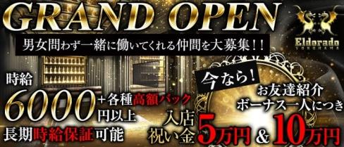 横浜Eldorado(エルドラド)【公式求人情報】(横浜キャバクラ)の求人・バイト・体験入店情報