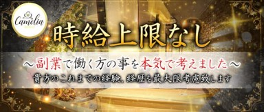 Camelia Bianco(カメリアビアンコ)【公式求人情報】(神田キャバクラ)の求人・バイト・体験入店情報