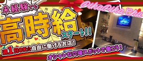 PikaPika Chu(ピカピカチュー)【公式求人情報】(新宿ガールズバー)の求人・バイト・体験入店情報