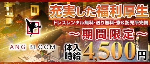 AngBloom(アンジュブルーム)【公式求人情報】(岡崎キャバクラ)の求人・バイト・体験入店情報