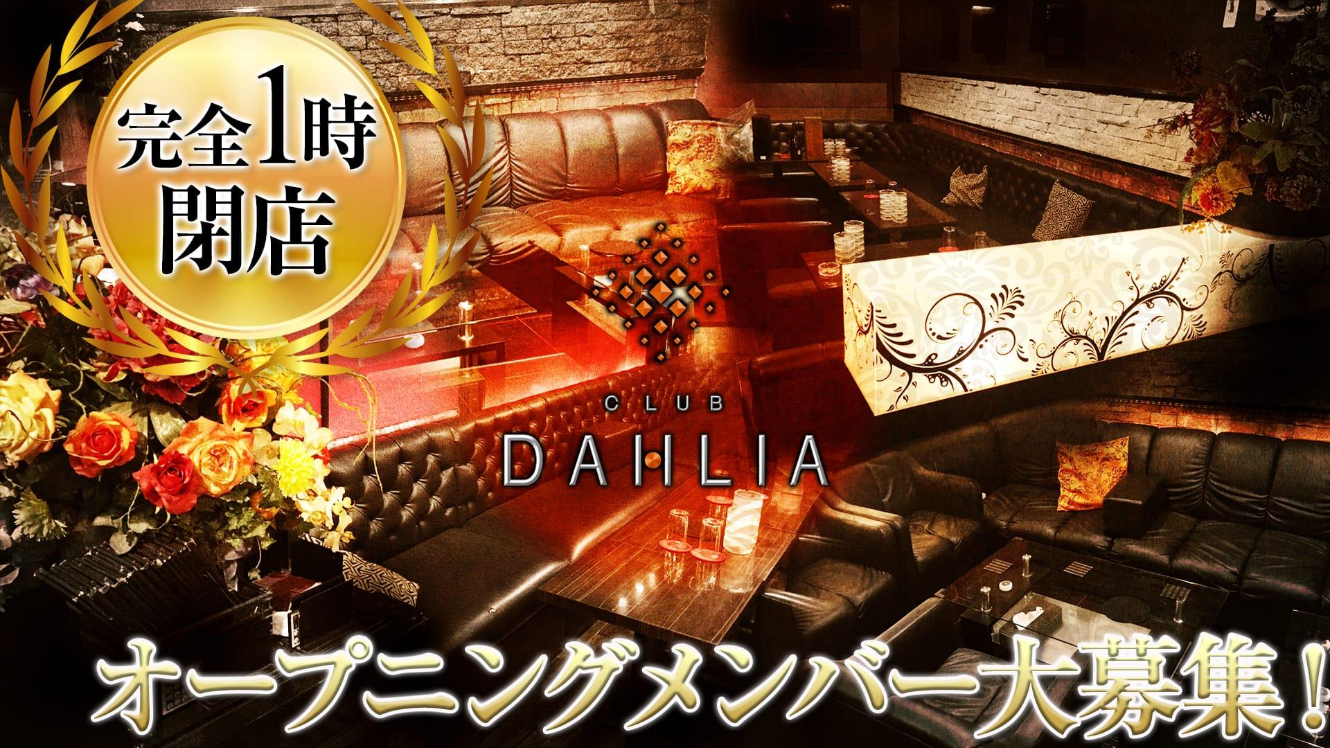 CLUB DAHLIA(ダリア) 上野キャバクラ TOP画像