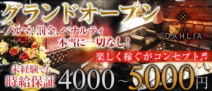 CLUB DAHLIA(ダリア) 上野キャバクラ バナー
