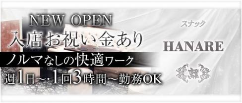 【朝霞台】スナックHANARE~離~(ハナレ)【公式求人情報】(南浦和スナック)の求人・バイト・体験入店情報