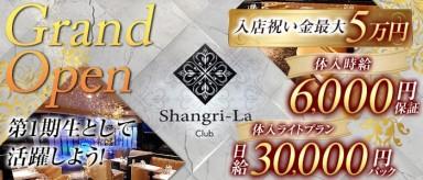 Shangri-La~シャングリ・ラ~【公式求人情報】(平塚キャバクラ)の求人・バイト・体験入店情報