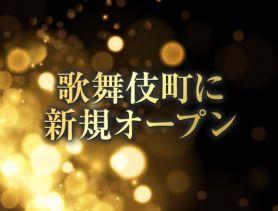 jewelries club Tokyo(ジュエリーズ クラブ トウキョウ) 歌舞伎町キャバクラ SHOP GALLERY 1