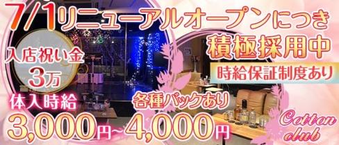 コットンクラブ藤沢店【公式求人情報】(藤沢パブクラブ)の求人・バイト・体験入店情報