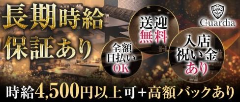 Guardia(ガルディア)【公式求人情報】(静岡キャバクラ)の求人・バイト・体験入店情報