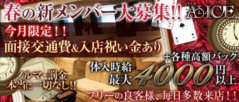 Club ALICE(アリス)【公式求人情報】(浜松キャバクラ)の求人・体験入店情報