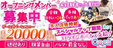 Girls Bar CECIL(セシル)【公式求人情報】(錦糸町ガールズバー)の求人・バイト・体験入店情報
