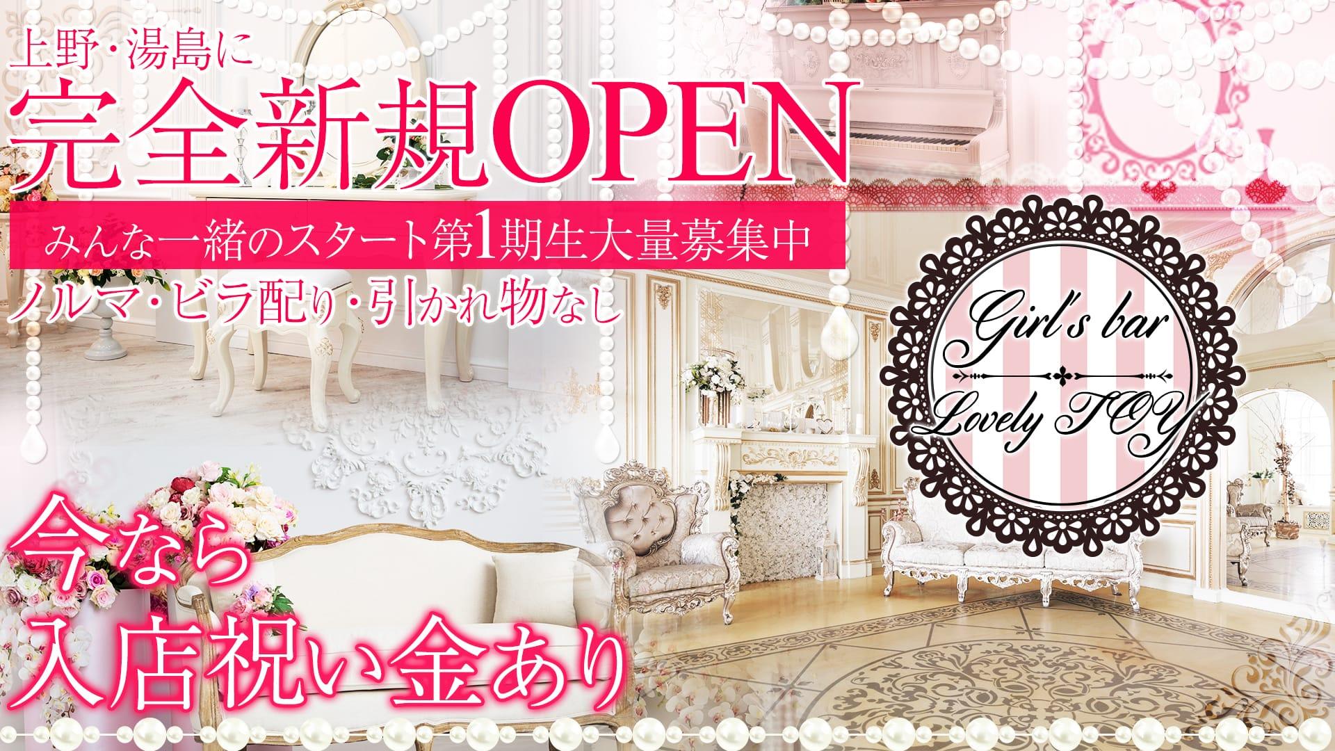 Girl's bar Lovely TOY(ラブリートイ) 上野ガールズバー TOP画像