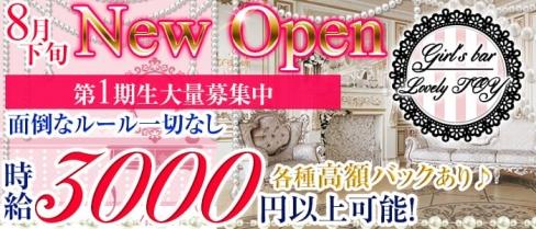 Girl's bar Lovely TOY(ラブリートイ)【公式求人情報】(上野ガールズバー)の求人・バイト・体験入店情報