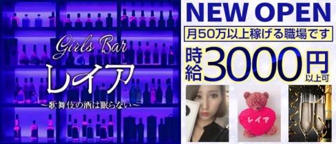 girls Bar レイア【公式求人情報】(歌舞伎町ガールズバー)の求人・バイト・体験入店情報