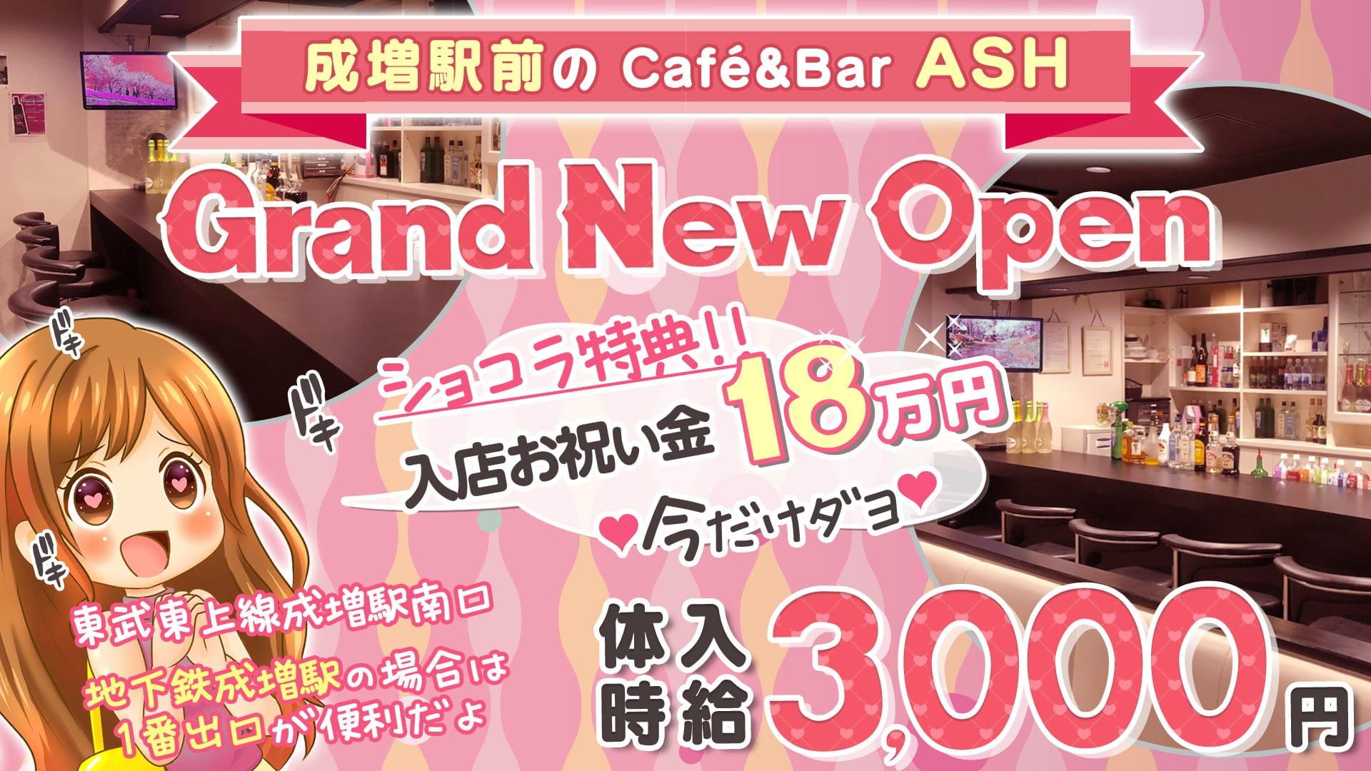 【成増駅南口】Café&Bar ASH(アッシュ)【公式求人・体入情報】 池袋ガールズバー TOP画像