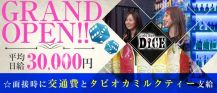 Girls Bar DICE(ダイス)【公式求人情報】 バナー