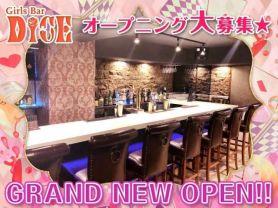 Girls Bar DICE(ダイス) 新橋ガールズバー SHOP GALLERY 1