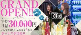 Girls Bar DICE(ダイス) 新橋ガールズバー 即日体入募集バナー