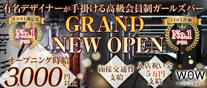 Girl's Bar WOW(ワオ) 錦糸町ガールズバー バナー