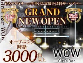 Girl's Bar WOW(ワオ) 錦糸町ガールズバー SHOP GALLERY 1