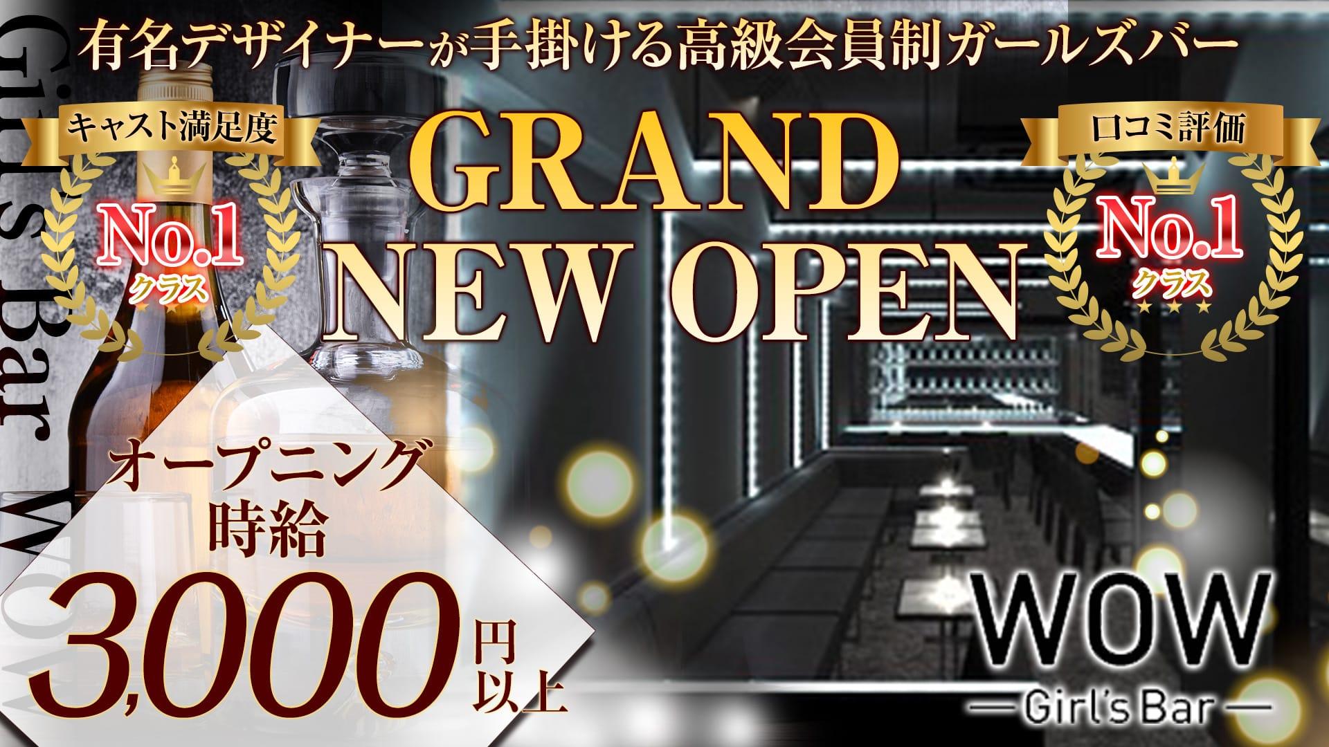 Girl's Bar WOW(ワオ) 錦糸町ガールズバー TOP画像