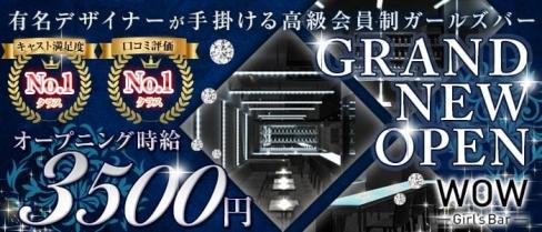 Girl's Bar WOW(ワオ)【公式求人情報】(錦糸町ガールズバー)の求人・体験入店情報