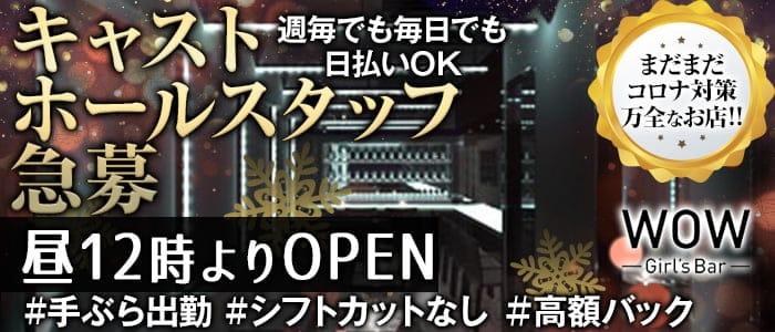 【昼・夜】Girl's Bar WOW(ワオ)【公式求人・体入情報】 錦糸町ガールズバー バナー