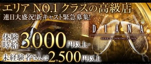DIANA(ダイアナ)【公式求人情報】(静岡キャバクラ)の求人・体験入店情報