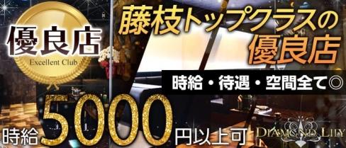DIAMOND LILY(ダイアモンド リリー)【公式求人情報】(藤枝キャバクラ)の求人・バイト・体験入店情報
