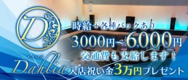 CLUB Dahlia(ダリア)【公式求人情報】(木屋町キャバクラ)の求人・バイト・体験入店情報
