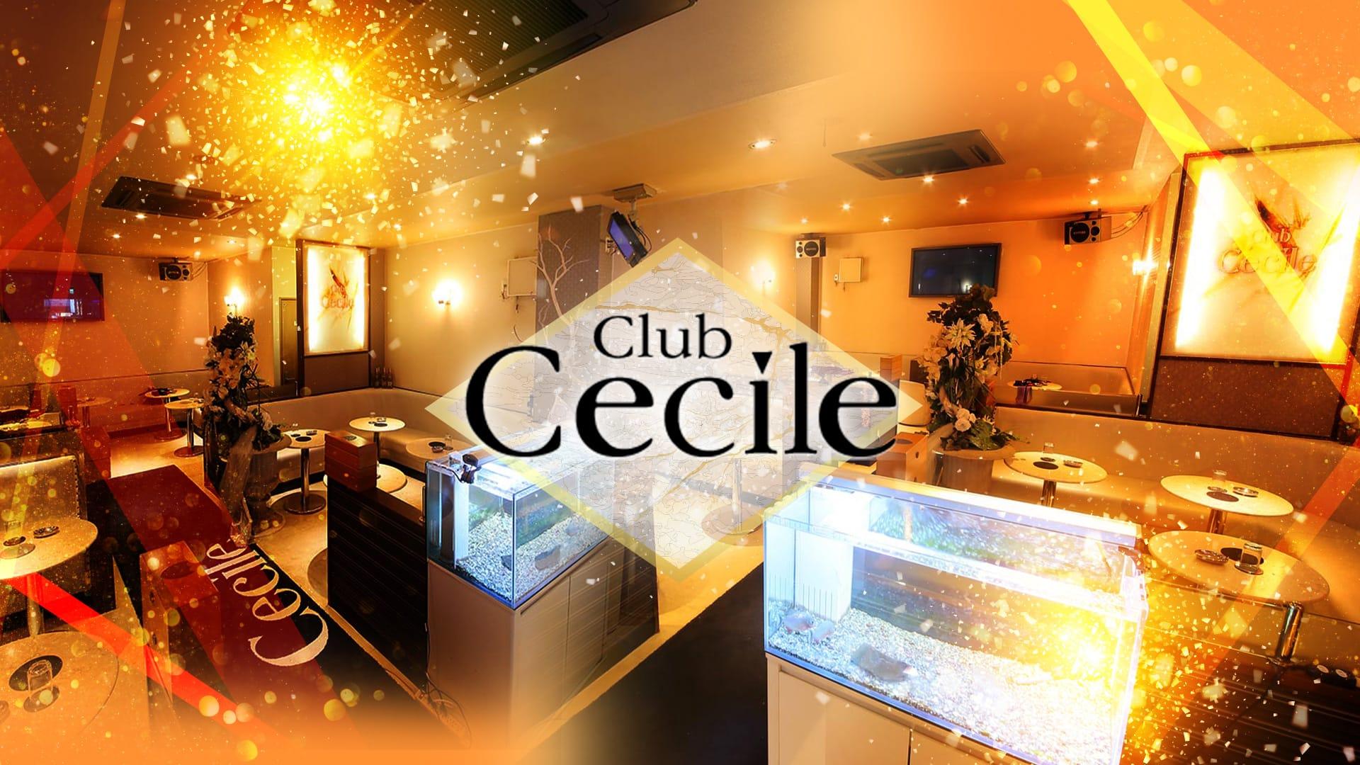 Club Cecile(セシル)【公式求人・体入情報】 川崎キャバクラ TOP画像