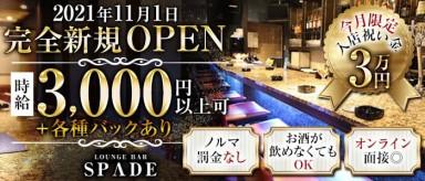 Bar SPADE(スペード)【公式求人・体入情報】(北新地ガールズバー)の求人・バイト・体験入店情報