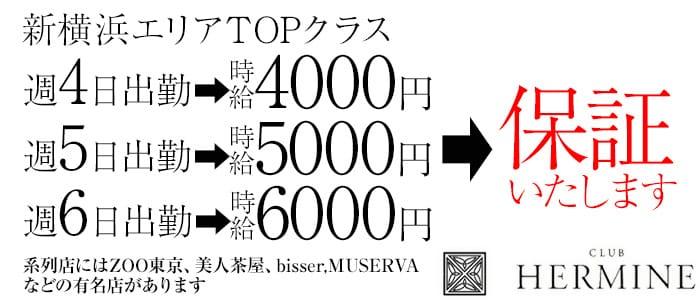 HERMINE 新横浜~エルミネ~ 新横浜キャバクラ バナー