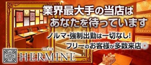 HERMINE 新横浜~エルミネ~【公式求人情報】(新横浜キャバクラ)の求人・体験入店情報