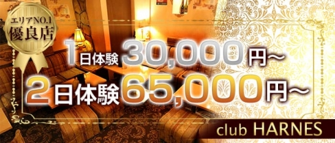 club HARNES(ハーネス)【公式求人情報】(藤沢キャバクラ)の求人・バイト・体験入店情報